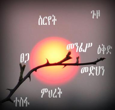 Tsegaye Gebremedhin Poems Pdf